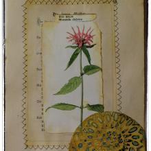 Jill-mcdowell-stencilgirl-stencil-altered-book-page-botanical